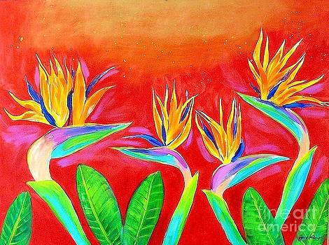 Birds Of Paradise by Jane Kempe