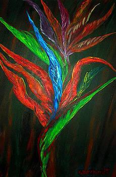 Birds of Paradise by Melissa Borchardt
