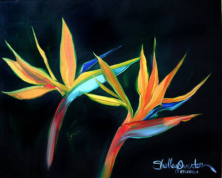 Birds of Paradise by Shelley Overton