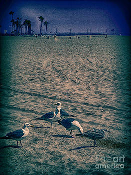Charles Davis - Birds of Venice Beach