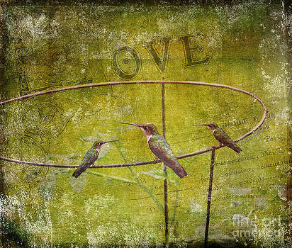 Birds on a Wire by Patricia Griffin Brett
