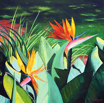Birds...in Paradise by Phyllis London