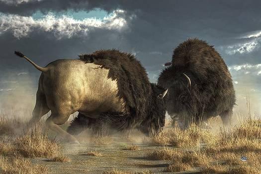 Bison Fight by Daniel Eskridge