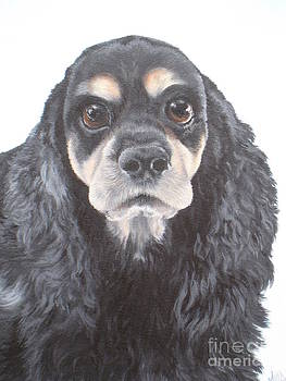 Black and Tan Spaniel by Jill Jones