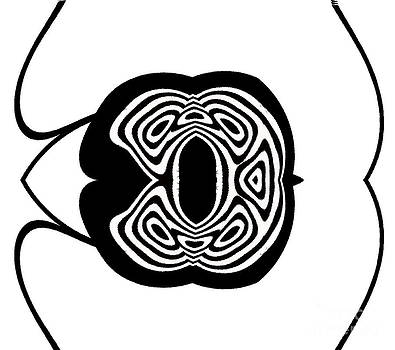 Black White Abstract Minimalism Art No.290. by Drinka Mercep