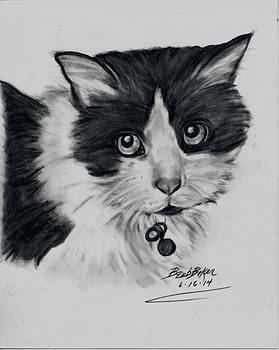 Barb Baker - Black and White cat