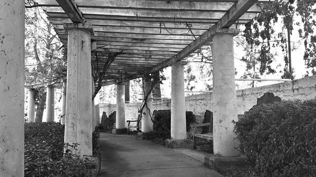 Black and White Columns by Brandon McClintock