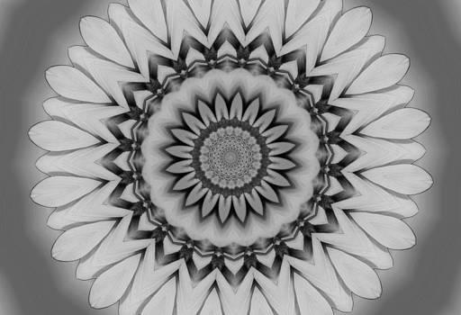 MTBobbins Photography - Black and White Kaleidoscope