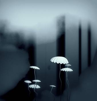 Black And White Mushrooms by GuoJun Pan