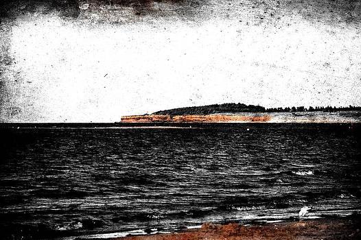 Laura Carter - Black and White PEI Ocean View