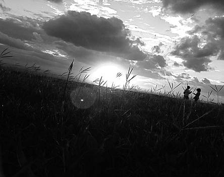 Black and White Sunset Silhouette by Hannah Rose