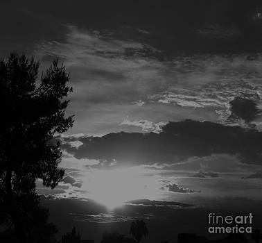 Black and white sunset by Theresa Davis