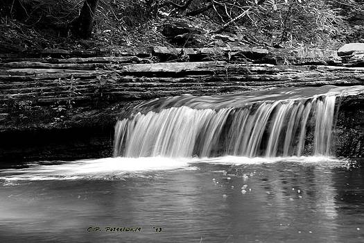 Black and White Waterfall by Carolyn Postelwait