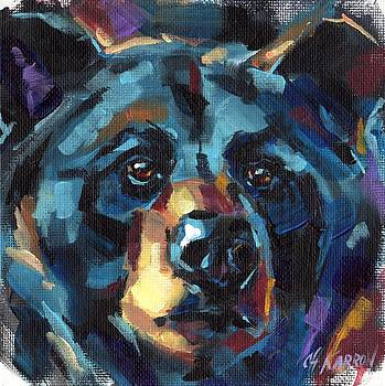 Black Bear by Christine Karron