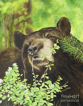 Black Bear by Sara Alexander Munoz