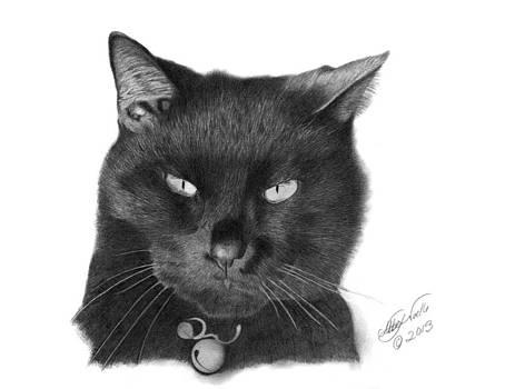 Black Cat - 008 by Abbey Noelle