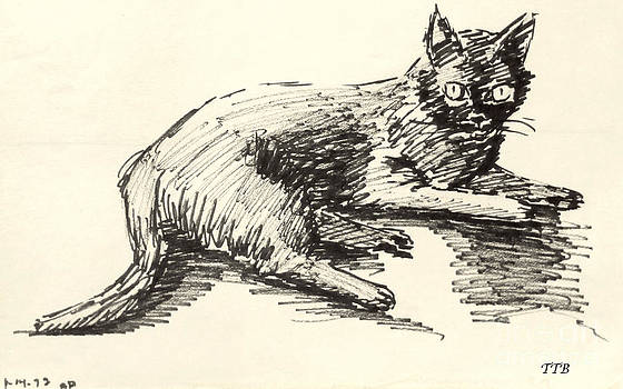 Art By - Ti   Tolpo Bader - Black Cat