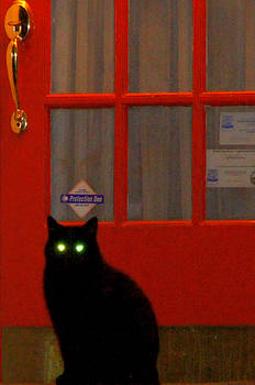 Black Cat Red Door by DerekTXFactor Creative