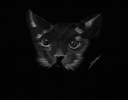 Black Cat by Saki Art
