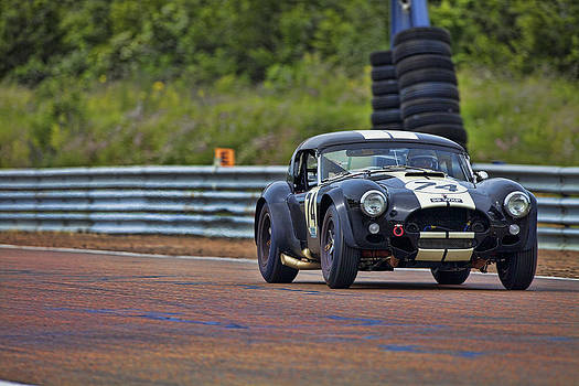 Black Cobra by Peter Falkner