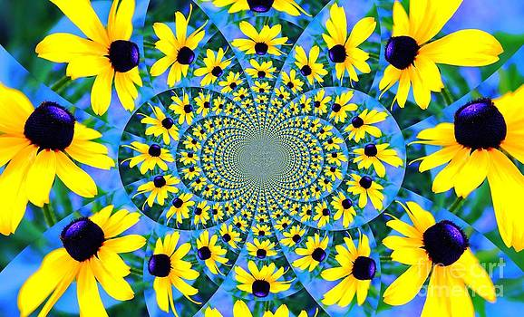 Black Eyed Susan Kaleidoscope by Judy Palkimas