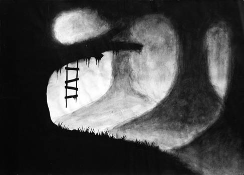 Black Forest by Salman Ravish