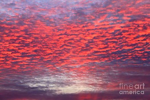Black Friday Sunrise by Jay Nodianos