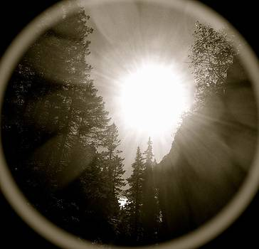Black Hole Sun by Stephanie  Bland