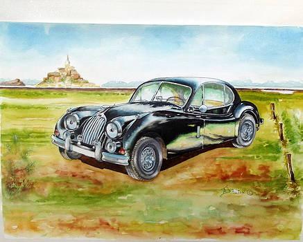Black Jaguar by Anne Dalton