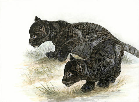 Black Leopard Cubs by Marshall Bannister