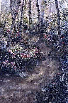 Black Mandel Trail by Mary Levingston