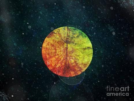 Black Moon Rising by Nancy TeWinkel Lauren