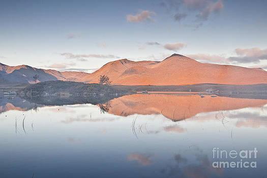 Black Mount and Rannoch Moor by Julian Elliott