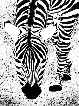 Black or White Striped by Barbara Pelizzoli