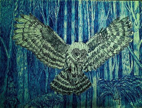 Black Owl on Blue Night by Rodger Larson