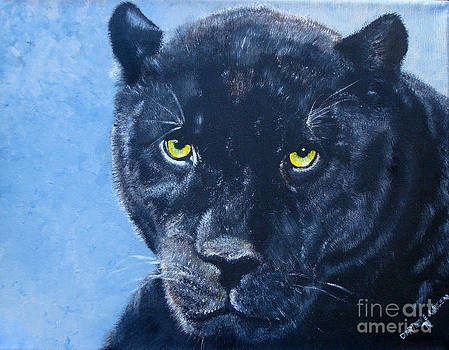 Black Panther by Darlene Green