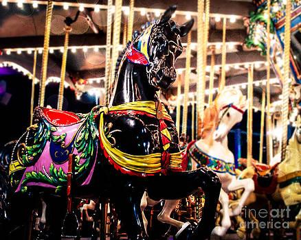 Sonja Quintero - Black Stallion on the Carousel