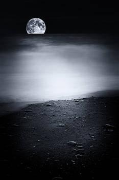 Black sweet by Philippe Sainte-Laudy