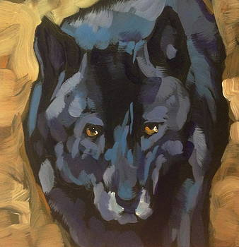 Black Wolf Portrait by Kat Corrigan