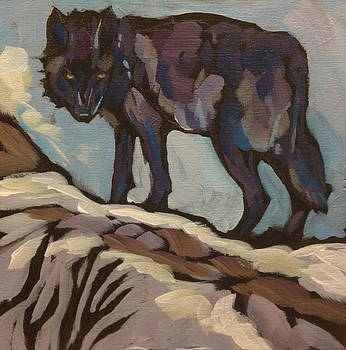 Black Wolf Standing by Kat Corrigan