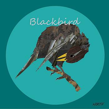 Blackbird by Kenneth North