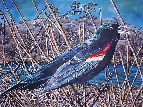 Blackbird by Linda Vaughon