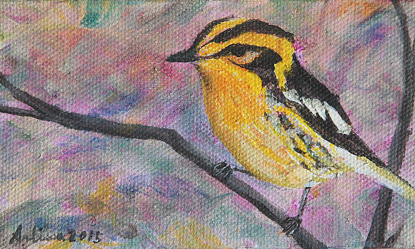 Blackburnian Warbler - Birds in the Wild by Arlissa Vaughn