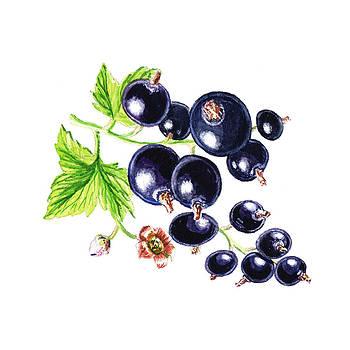Irina Sztukowski - Blackcurrant Happy Berries