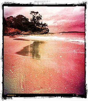 Blackman's Bay by Roz McQuillan