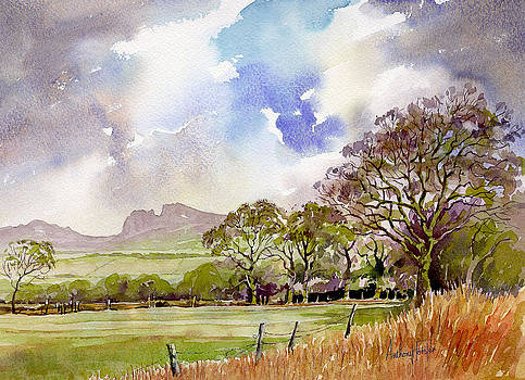 Anthony Forster - Blackshaw Moor