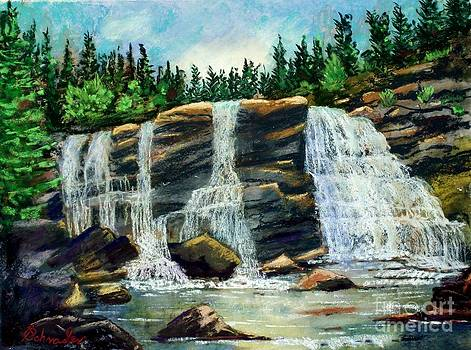 Blackwater Falls by Bruce Schrader
