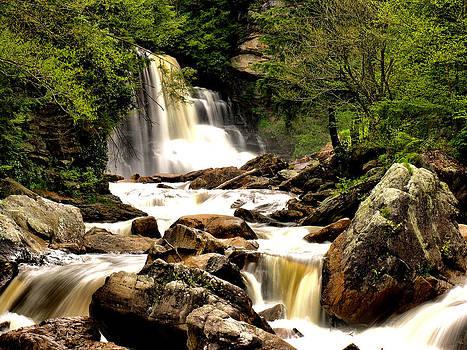 Matthew Winn - Blackwater Falls in Summer