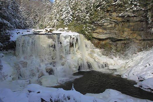 Matthew Winn - Blackwater Falls in Winter