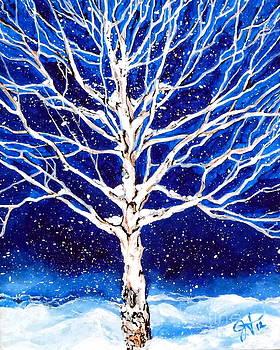 Blanket of Stillness by Jackie Carpenter